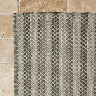 Hayes Rug Hand-Woven Gray Indoor/Outdoor Area Rug By Birch Lane™