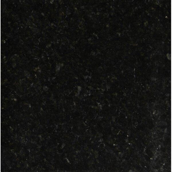 12 x 12 Granite Field Tile in Uba Tuba by MSI