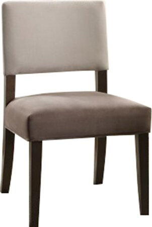 Donna Side Chair (Set of 2) by Ebern Designs