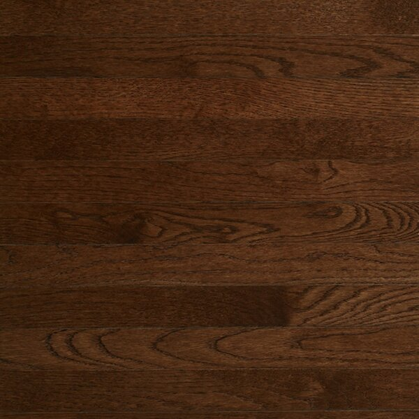 Color Plank 3-1/4 Engineered White Oak Hardwood Flooring in Metro Brown by Somerset Floors