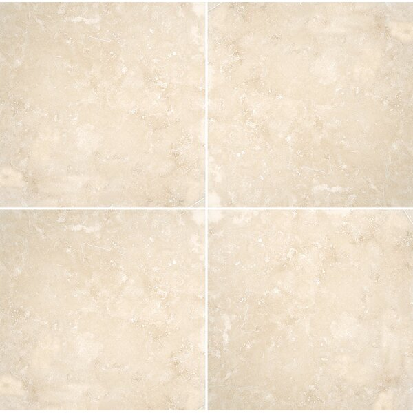 Premium 12 x 12 Travertine Field Tile in Ivory Honed by Parvatile