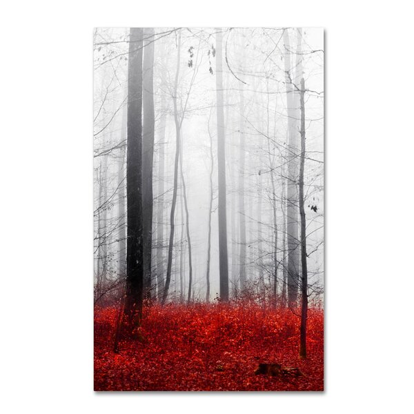Little Red Carpet by Philippe Sainte-Laudy Photographic Print on Wrapped Canvas by Trademark Fine Art