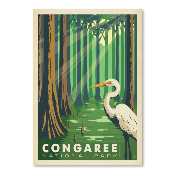 Congaree National Park Vintage Advertisement by East Urban Home