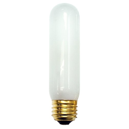 25W Frosted 130-Volt (2420K) Incandescent Light Bulb (Set of 18) by Bulbrite Industries