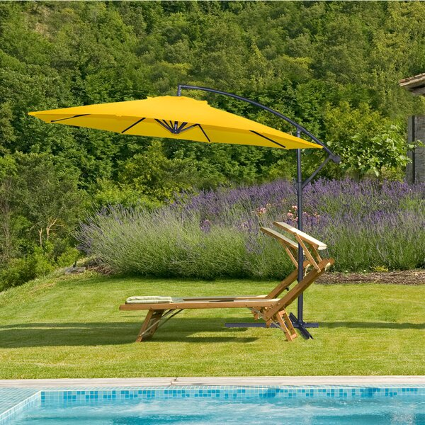 Forman Cantilever Umbrella by Bay Isle Home