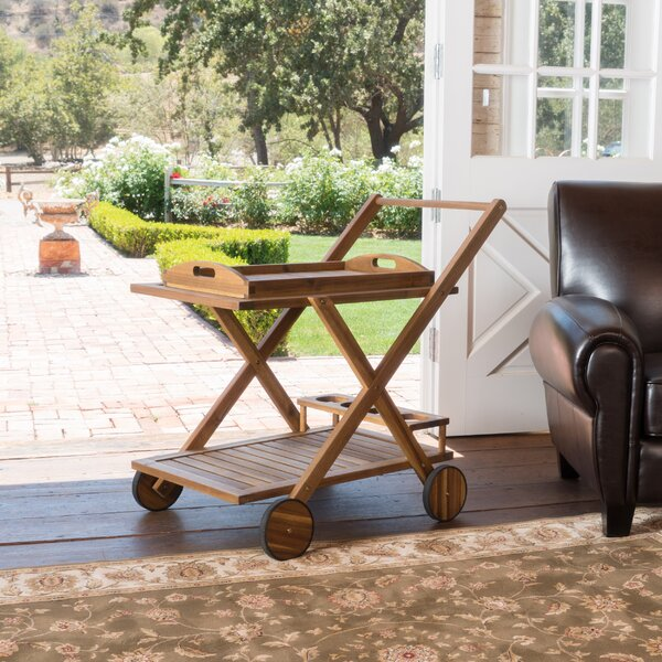 Deming Bar Cart by Bay Isle Home