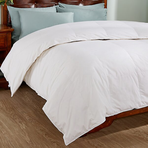 All Season Down Comforter by Alwyn Home