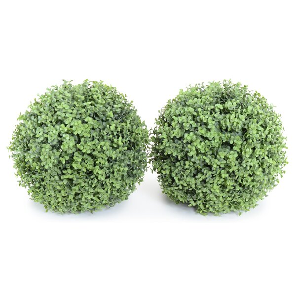 Indoor and Outdoor Round Faux Boxwood Ball (Set of 2) by Charlton Home