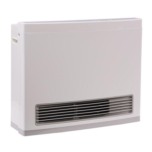 R Series 24,000 BTU Electric/Natural Gas Fan Wall Insert Heater by Rinnai