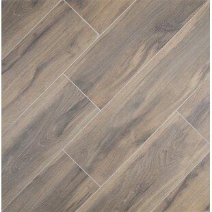 Wood look tile youll love wayfair botanica cashew 6 x 24 porcelain wood tile in glazed textured tyukafo