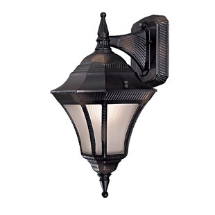 Reviews Segovia 1-Light Outdoor Wall Lantern By Great Outdoors by Minka