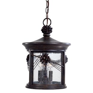 Affordable Price Abbey Lane 3-Light Outdoor Hanging Lantern By Great Outdoors by Minka