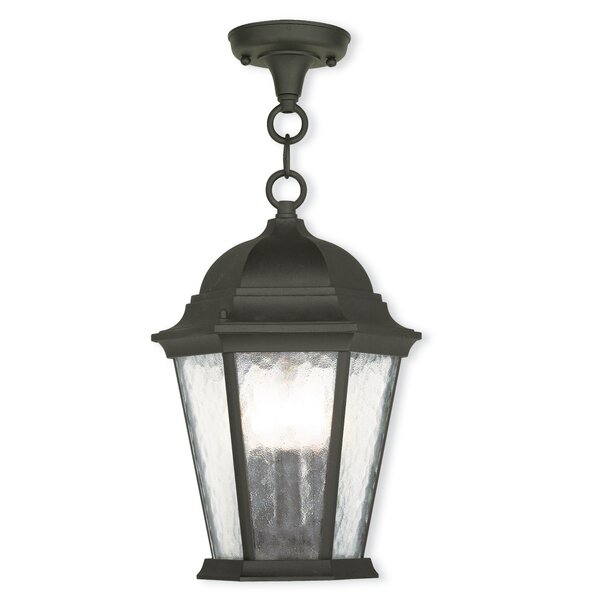 Busse 3-Light Outdoor Hanging Lantern by Darby Home Co