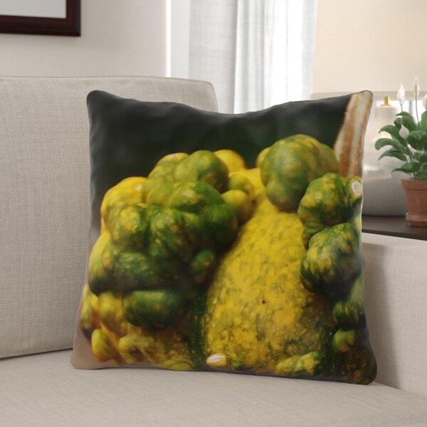 Haubert Pumpkins Indoor/Outdoor Throw Pillow
