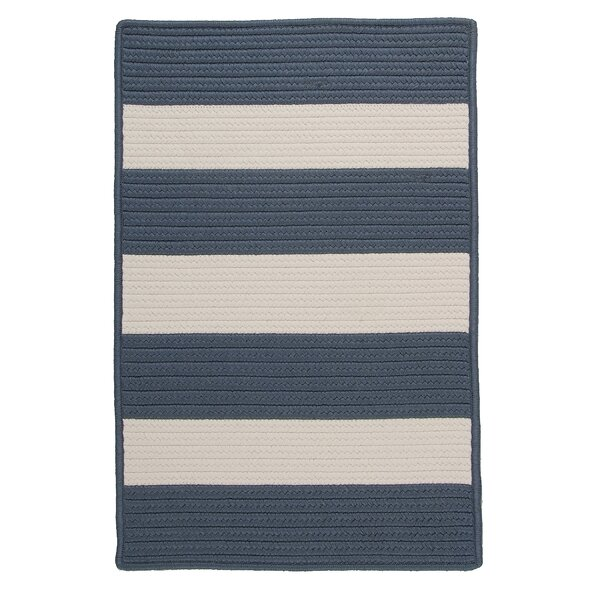 Agnon Striped Braided Lake Blue Indoor / Outdoor Area Rug