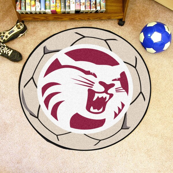 NCAA Cal State - Chico Soccer Ball by FANMATS