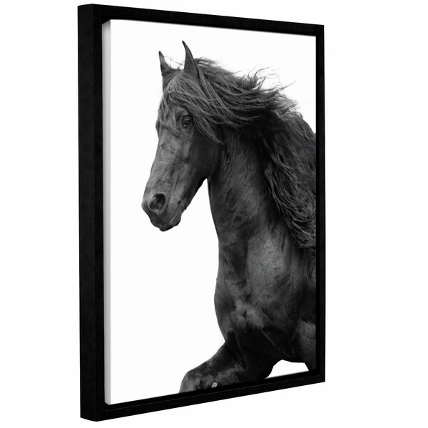 Friesian Framed Photographic Print on Wrapped Canvas by Alcott Hill