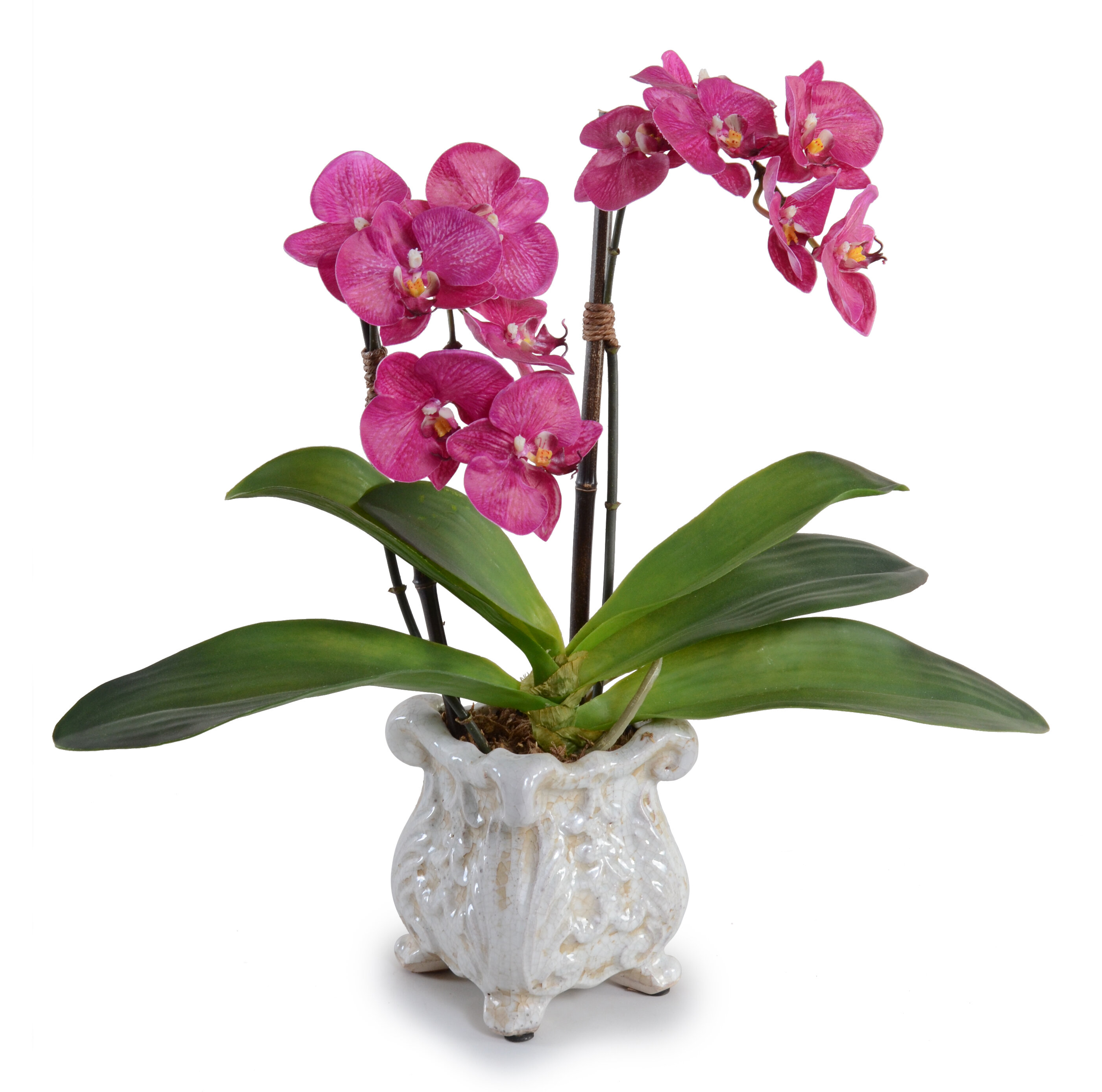 New Growth Designs Fuchsia Double Faux Phalaenopsis Orchid In Pot Reviews Wayfair