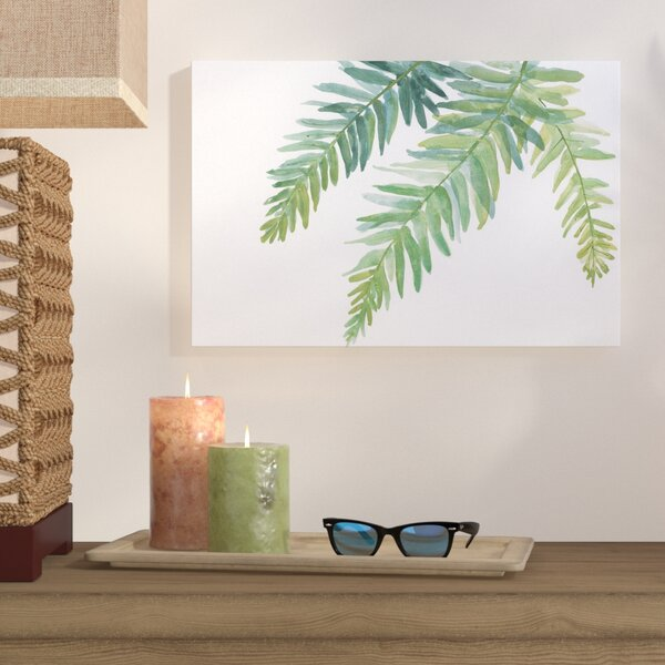 Ferns I Painting Print on Wrapped Canvas by Bay Isle Home