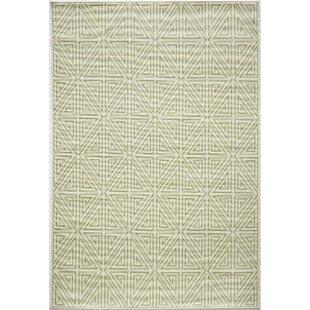 Lime Green Indoor Outdoor Rug | Wayfair
