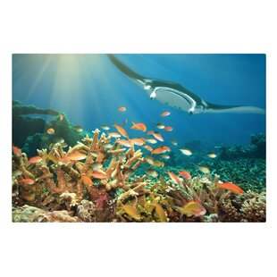 Coral Reef Graphic Art Print On Canvas