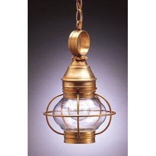 Reviews Onion 1-Light Outdoor Hanging Lantern By Northeast Lantern
