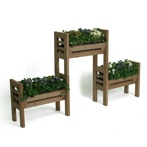 1.5 ft. x 1 ft. Resin Raised Garden by Algreen