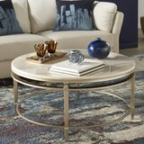 Velasco Frame Coffee Table by Everly Quinn