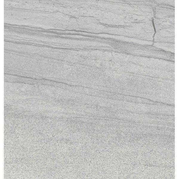 Sandstorm 18 x 18 Porcelain Field Tile in Mojave by Emser Tile