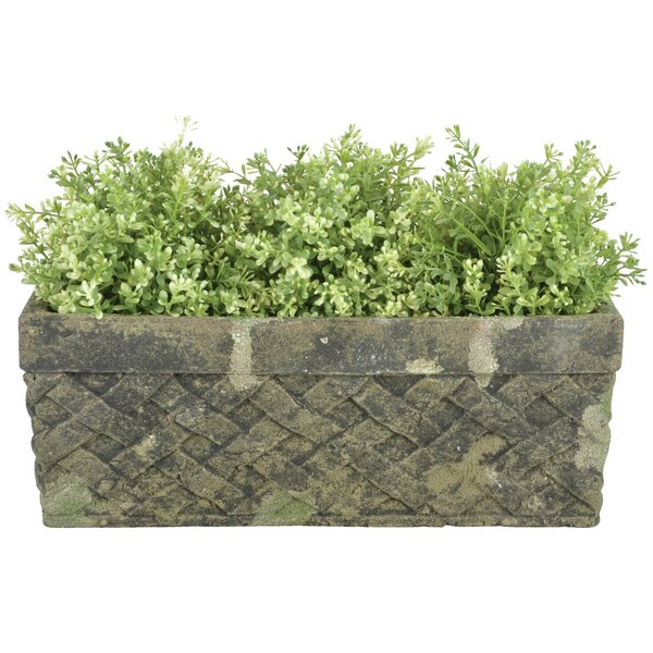 Aged Trough Ceramic Planter Box by EsschertDesign