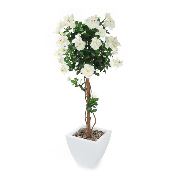 Artificial Floor Flowering Tree in Pot by House of Hampton