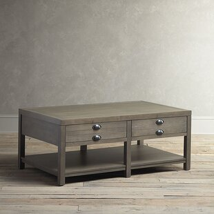 Read Reviews Stowe Coffee Table with Storage By Birch Lane™