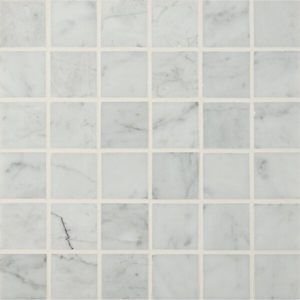 Carrara 2 x 2 Marble Mosaic Tile in White by MSI
