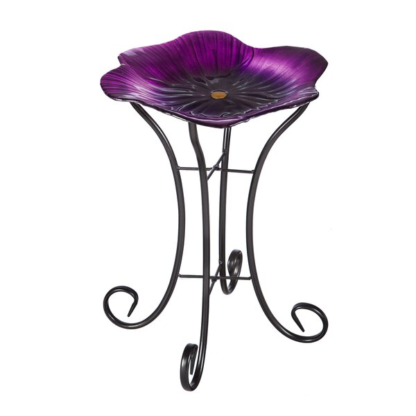 Pansy Birdbath with Stand by Evergreen Flag & Garden