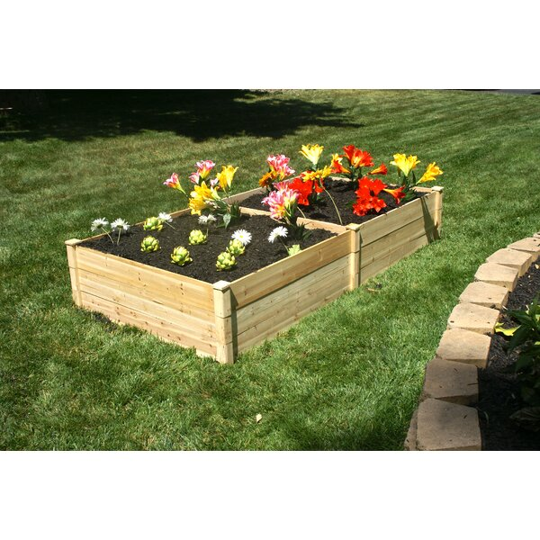Konkol 4 ft x 8 ft Wood Raised Garden by August Grove