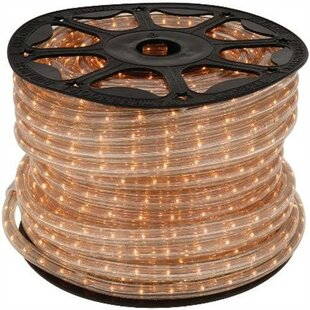 Best Reviews 150 ft. Rope Light By National Brand Alternative