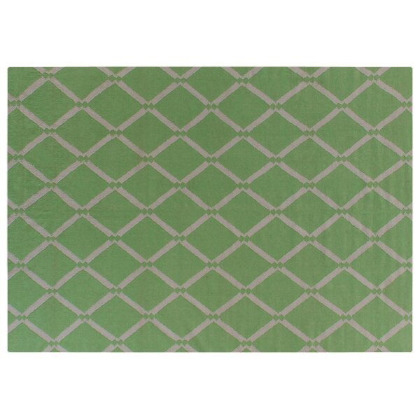 Hand-Woven Wool Mint Area Rug by Exquisite Rugs
