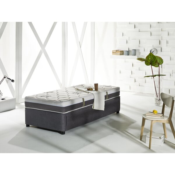 Four Seasons Twin XL Daybed With Trundle And Mattress By Latitude Run