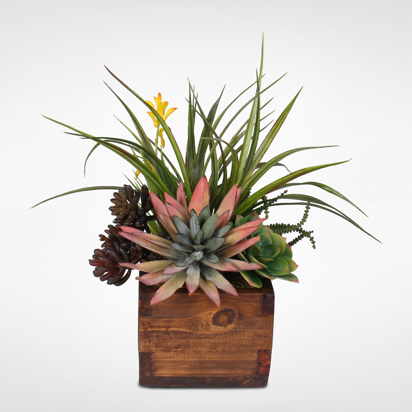 17 Stories Artificial Desktop Agave Pelona With Succulent Variety