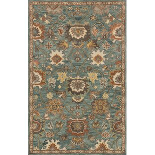 Reviews Durkee Blue Area Rug By Darby Home Co