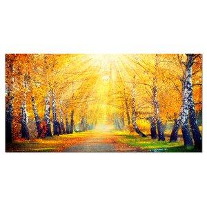 'Yellow Autumn Trees in Sunray' Photographic Print on Wrapped Canvas by Design Art