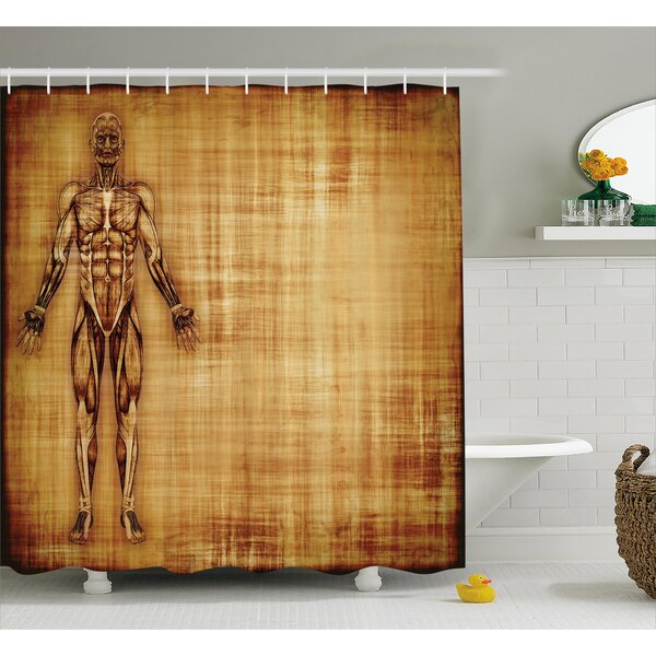 Human Anatomy Grunge Old Parchment Effect Skeleton Muscles of Human Body Retro Art Print Shower Curtain by Ambesonne