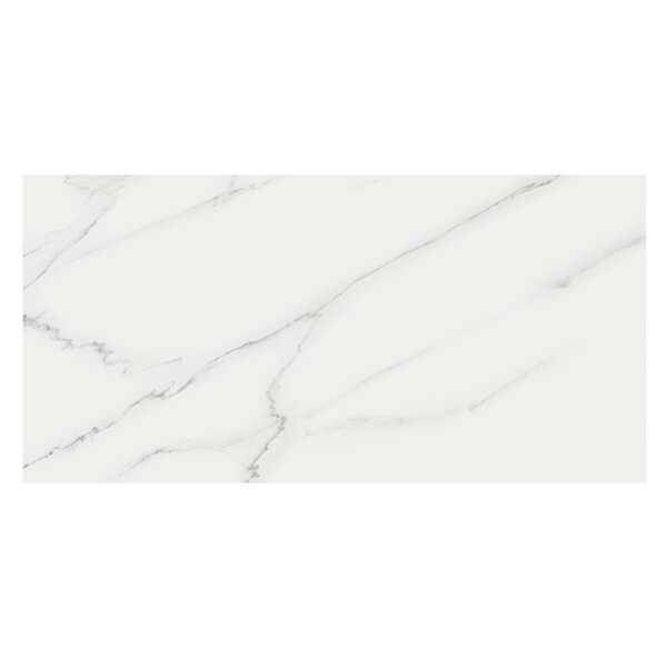 Marmi Pol 16 x 32 Porcelain Field Tile in Carrara by Casa Classica
