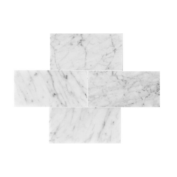 Bianco Carrara 3 x 6 Polished Marble Tile by Seven Seas