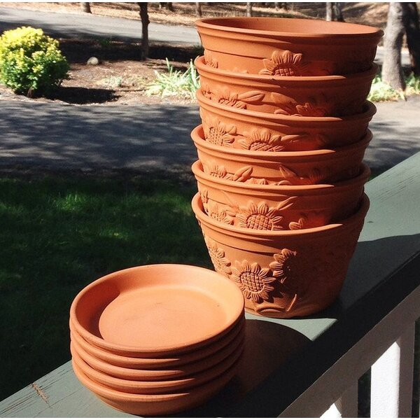 Frechette Raised Sunflower Embellished Terracotta Pot Planter (Set of 6) by Red Barrel Studio