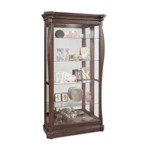 Deems Lighted Curio Cabinet by Darby Home Co