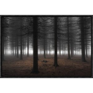 'Silence' by Dragisa Petrovic Framed Photographic Print by Global Gallery