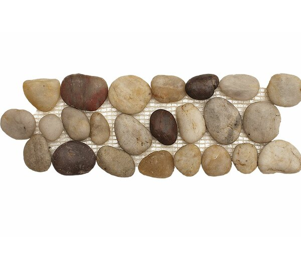 Pebble Border 12 x 4 Pebble Border Accent Tile in Wine by Parvatile