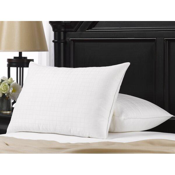 Cassiopeia Gel Fiber Pillow (Set of 2) by Alwyn Home