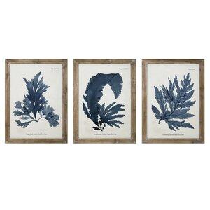 Vintage Fronds Framed Prints (Set of 3) by Birch Lane™